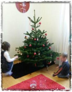 131212 Weihnachtsbaum Stufe 3R